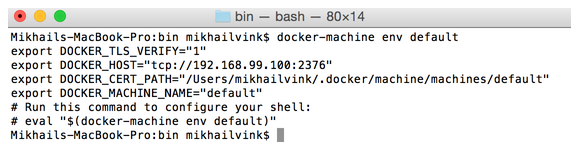 /help/img/idea/2016.3/docker_vm_console_params.png