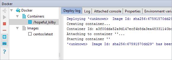 ApplicationServersToolWindowDocker