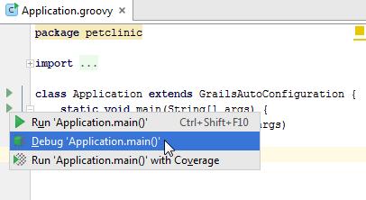 grails3 debug app main