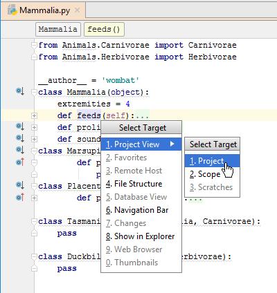 PyCharm: Select Target popup