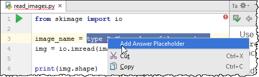 pe add answer placeholder