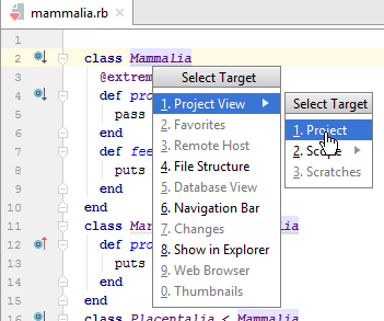 RubyMine: Select Target popup