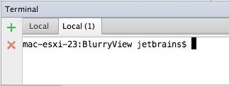 AppCode Terminal