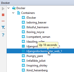 py docker running container