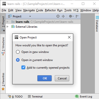 rm open multiple projects