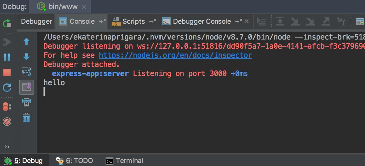 ws_node_debugging_process_console.png