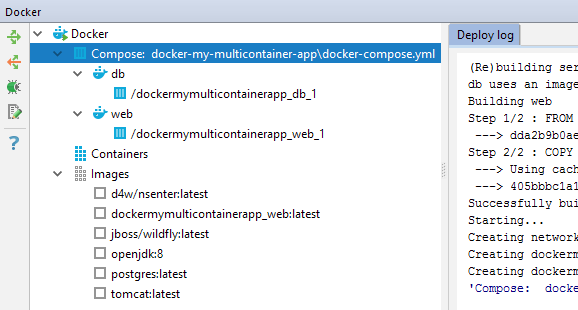 ws ps 95 DockerComposeRunning