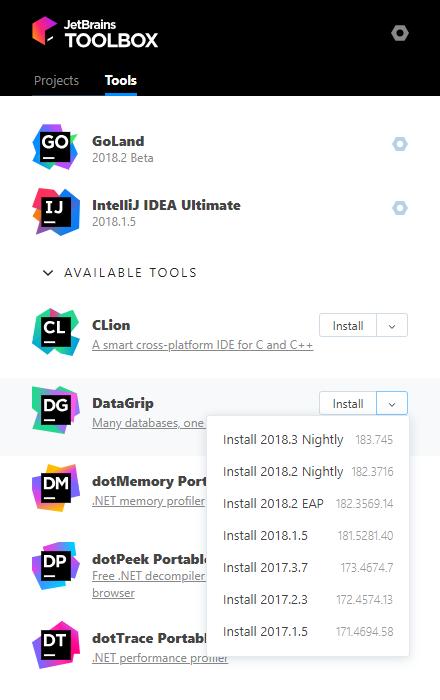 DataGrip in the Toolbox app