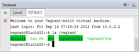 rm vagrant path mapping