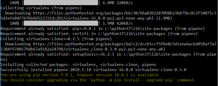 System response on successful pipenv installation