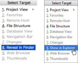 reveal in explorer finder