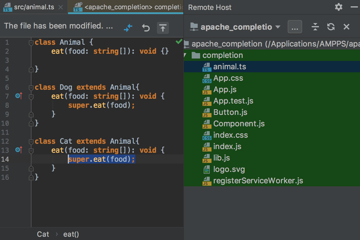 Editing Individual Files on Remote Hosts - Help | WebStorm