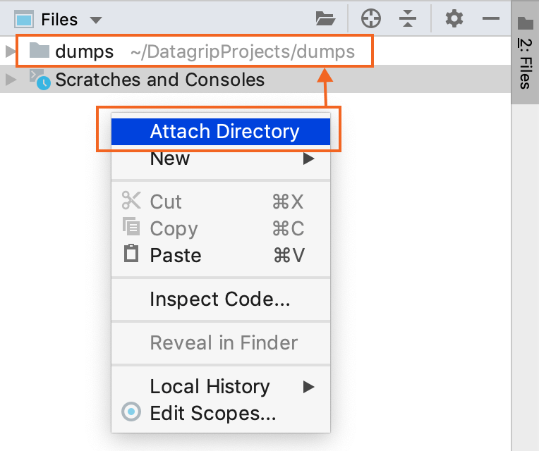 Attach a directory with cloned files