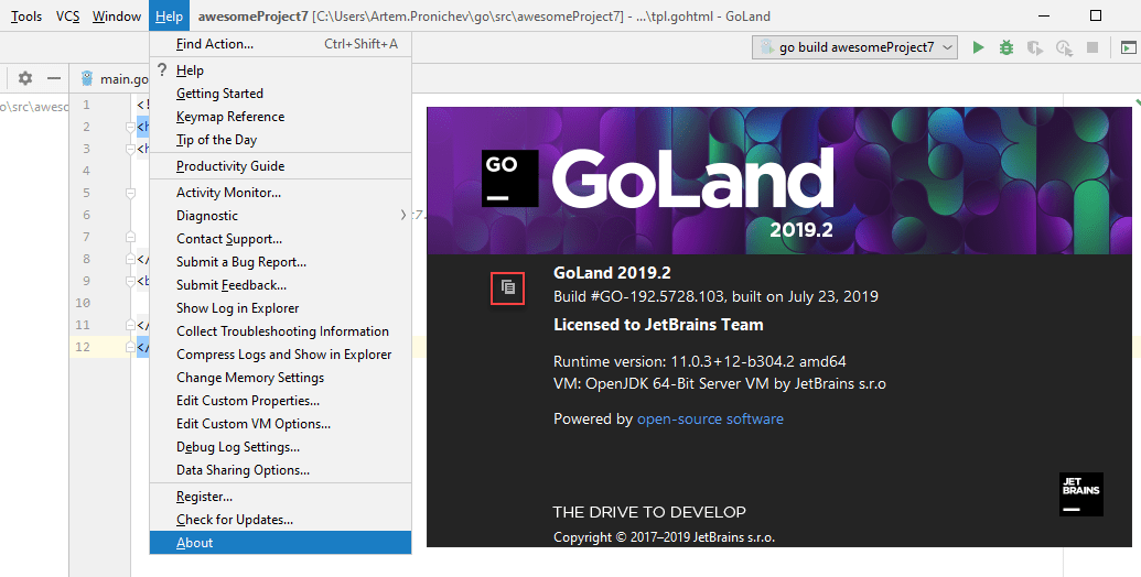 go product version windows