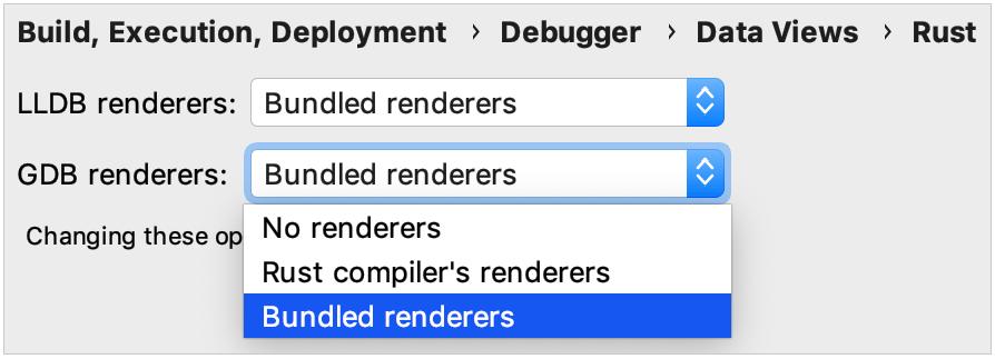 debugger data views options