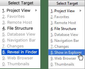 reveal in explorer finder
