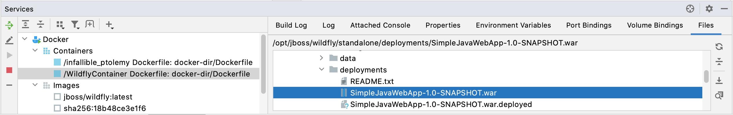Services tool window with running Wildfly container and deployed Java app