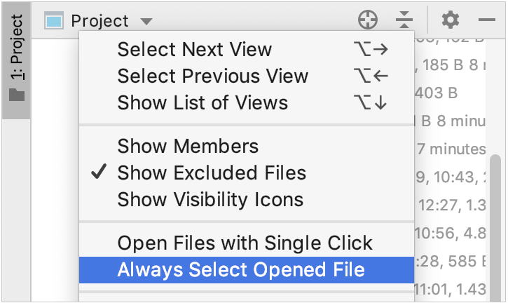 Project view context menu