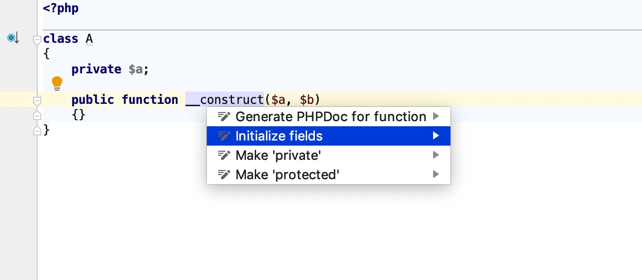 Initialize class properties intention
