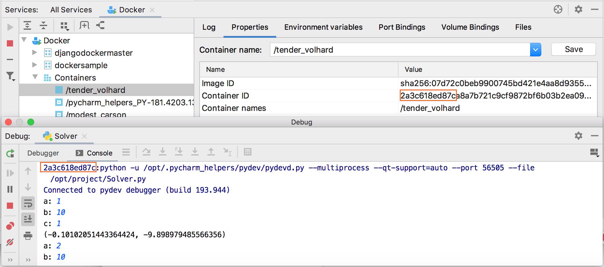 The Docker tool window and the Debug tool window