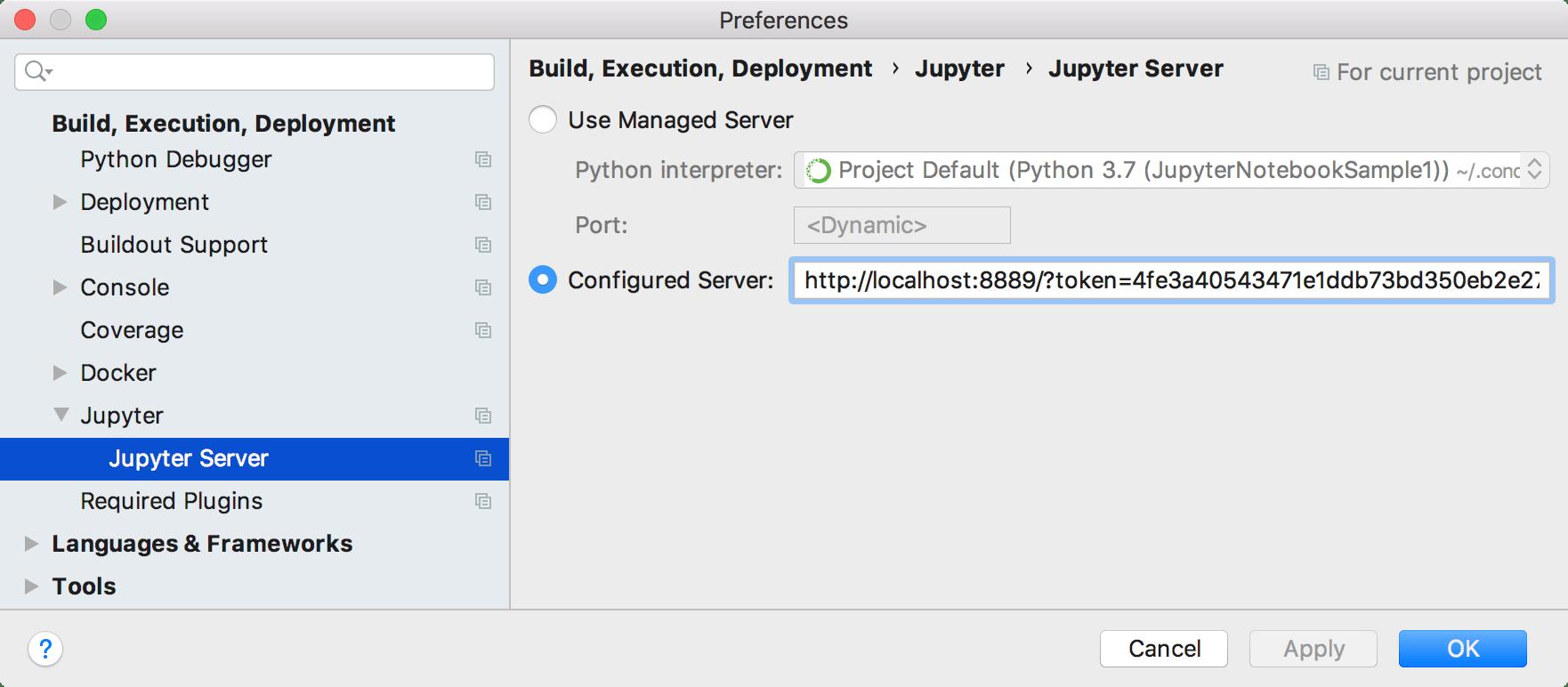 Configure a Jupyter server. Settings dialog
