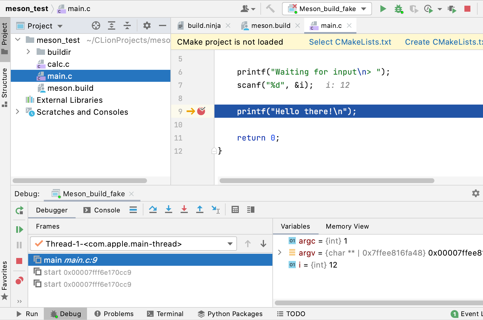 Debugging a custom build application