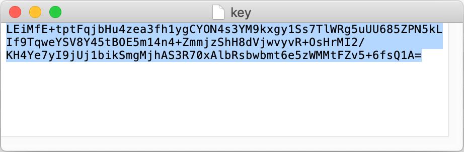 RSA key in a text editor