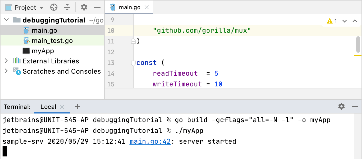 Build the application with gcflags flags
