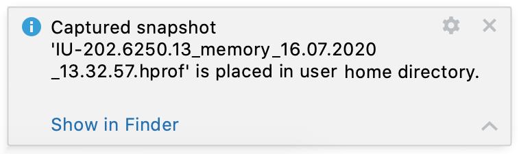 IDE memory snapshot is captured