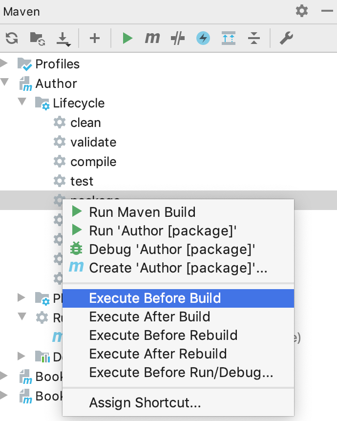 the Execute Before Build option
