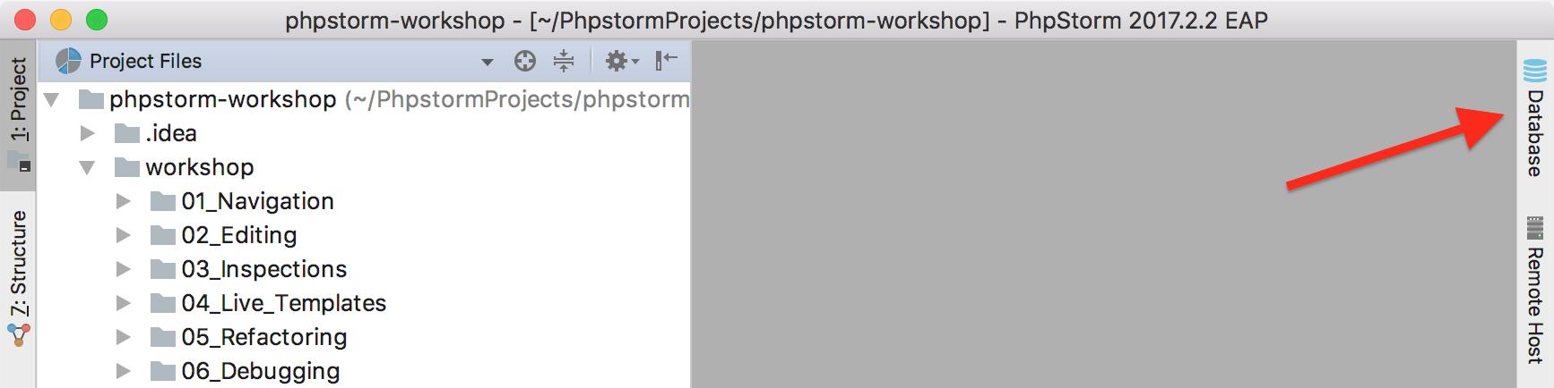 Open the Database tool window