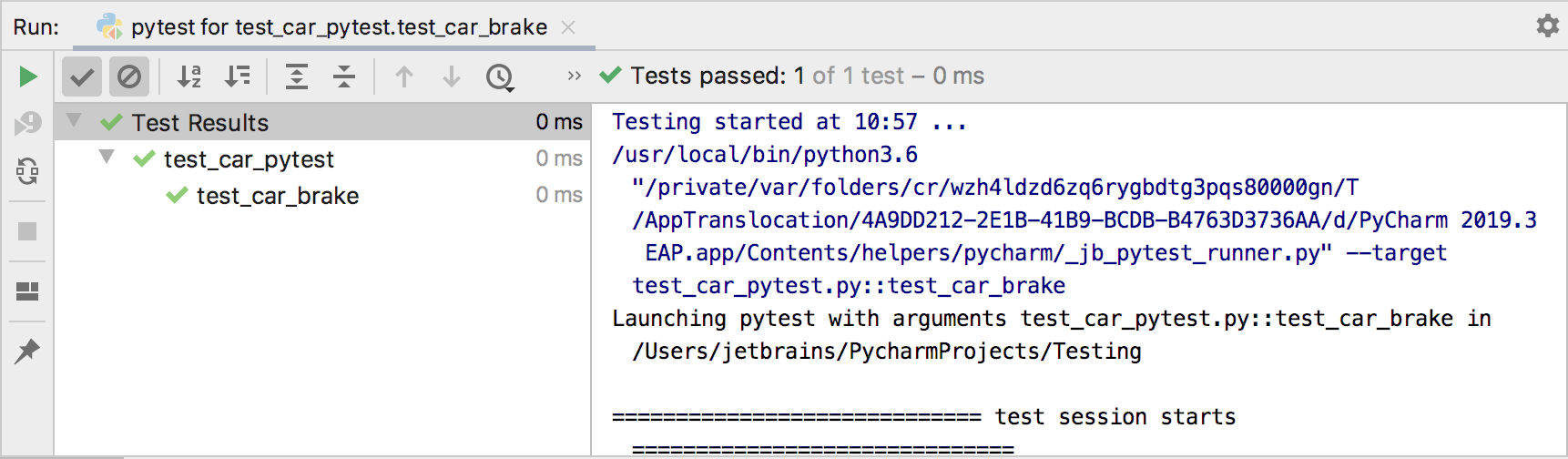 Pytest run