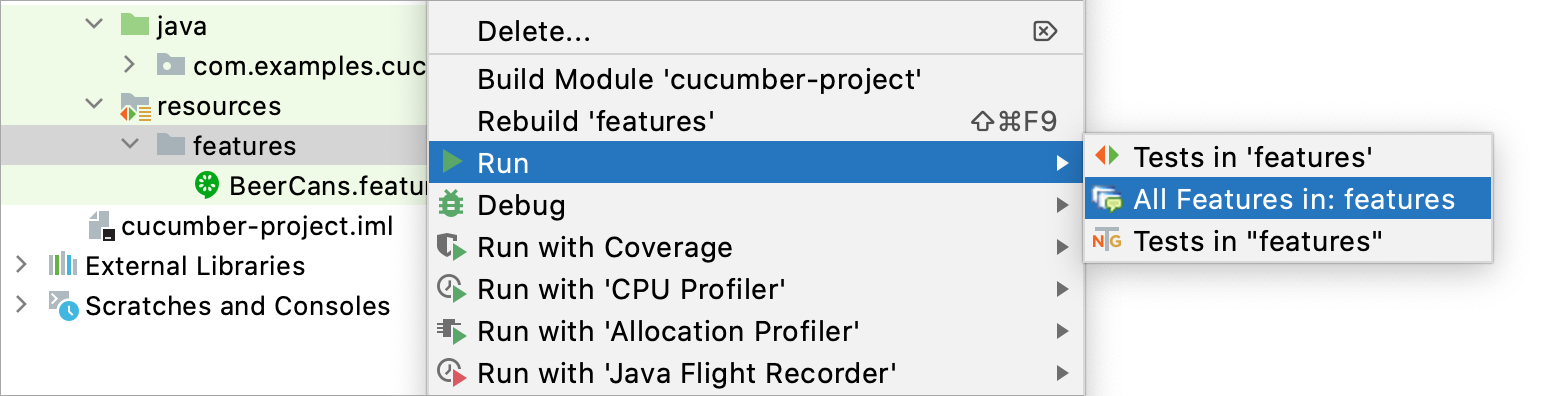 Running all features in the features folder