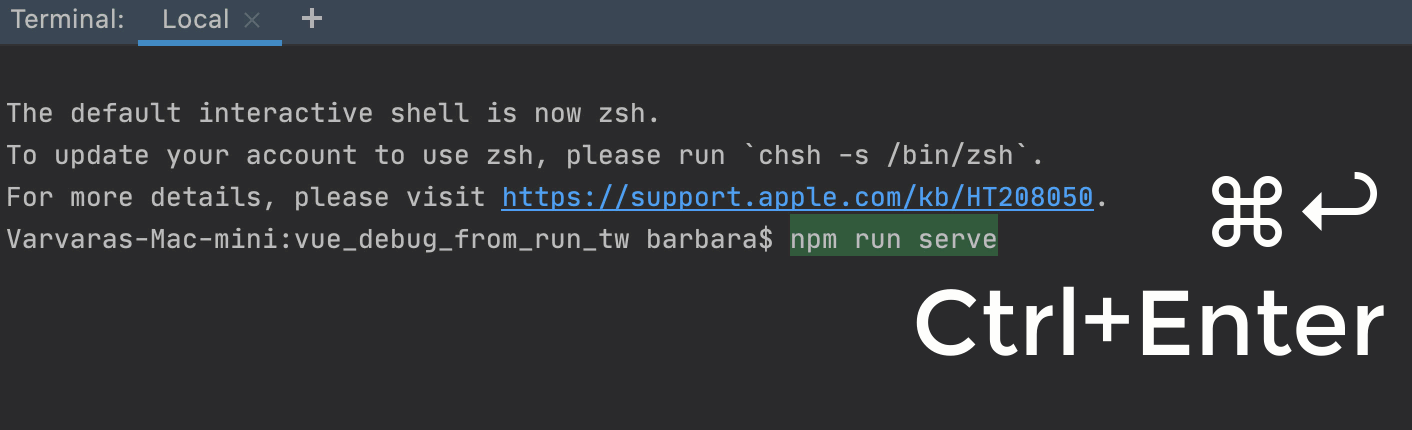 Launch npm serve  from the Terminal to run it in the Run tool window