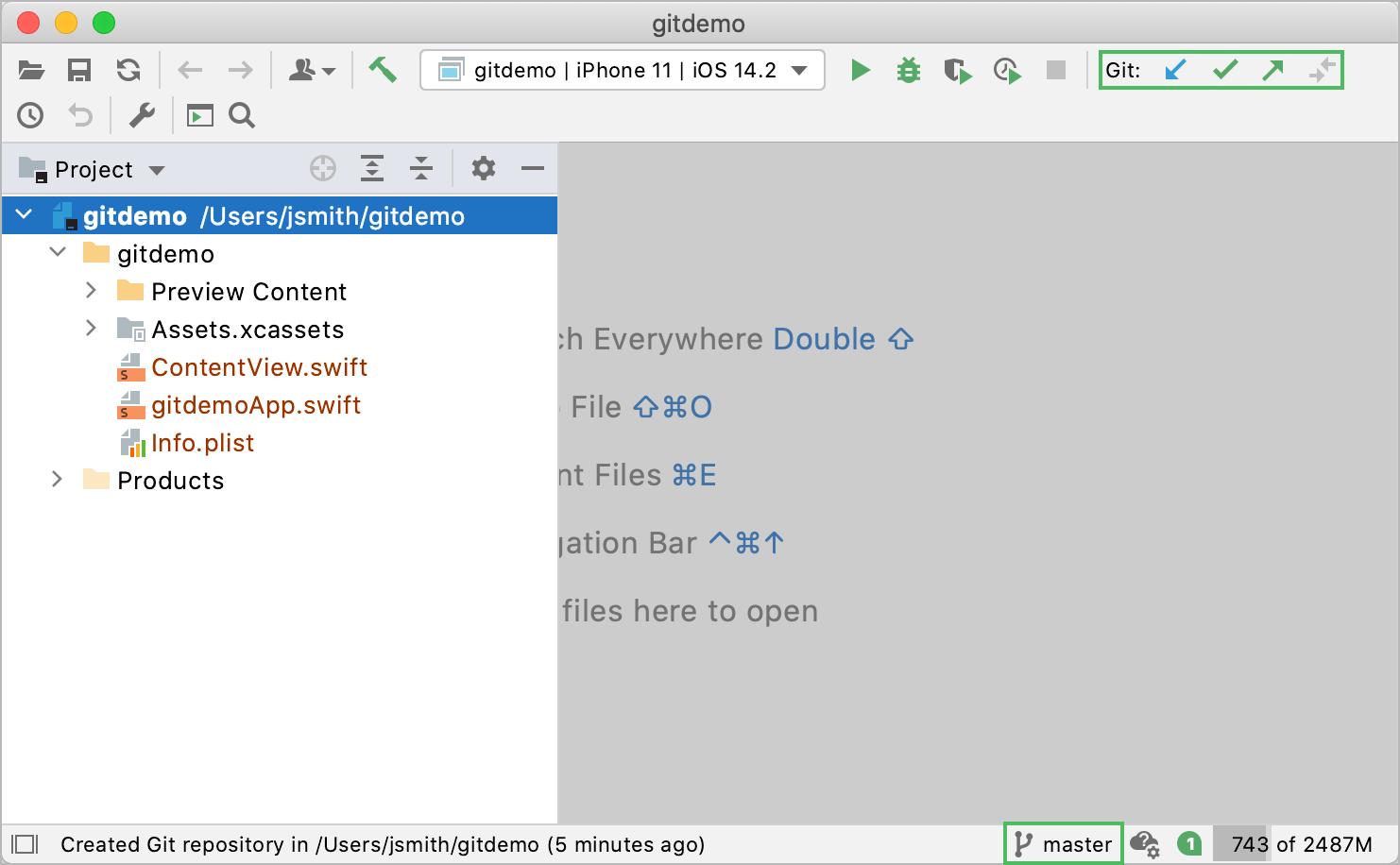 The Git tool window