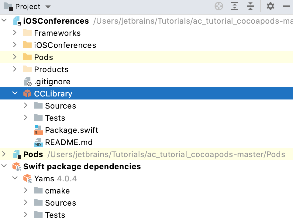SPM in the Project tool window