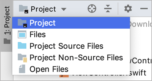 AppCode: choosing a view in the Project tool window