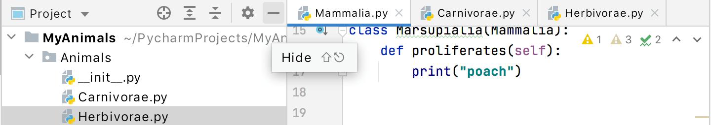 Hide the Project window