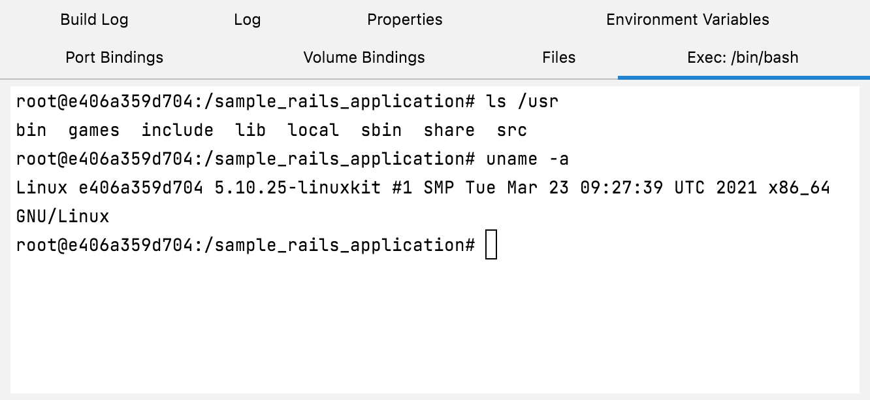 The Exec tab with /bin/bash running