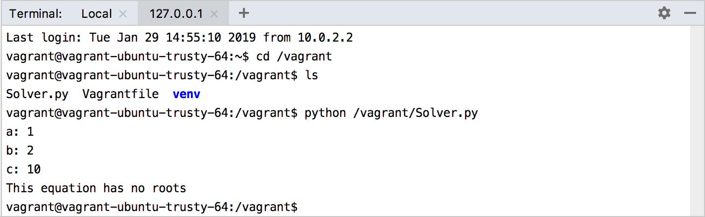 Running the script in the Vagrant VM