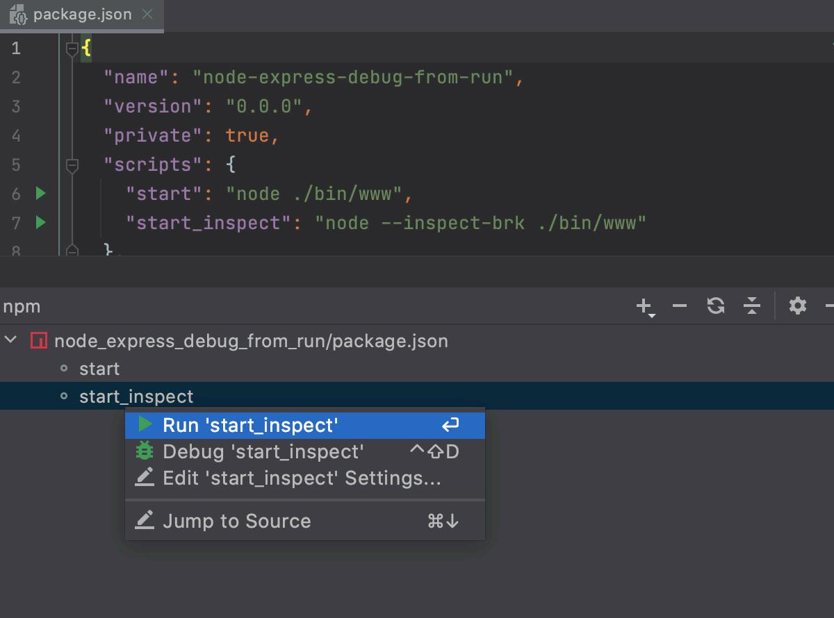 Run one script from the npm tool window