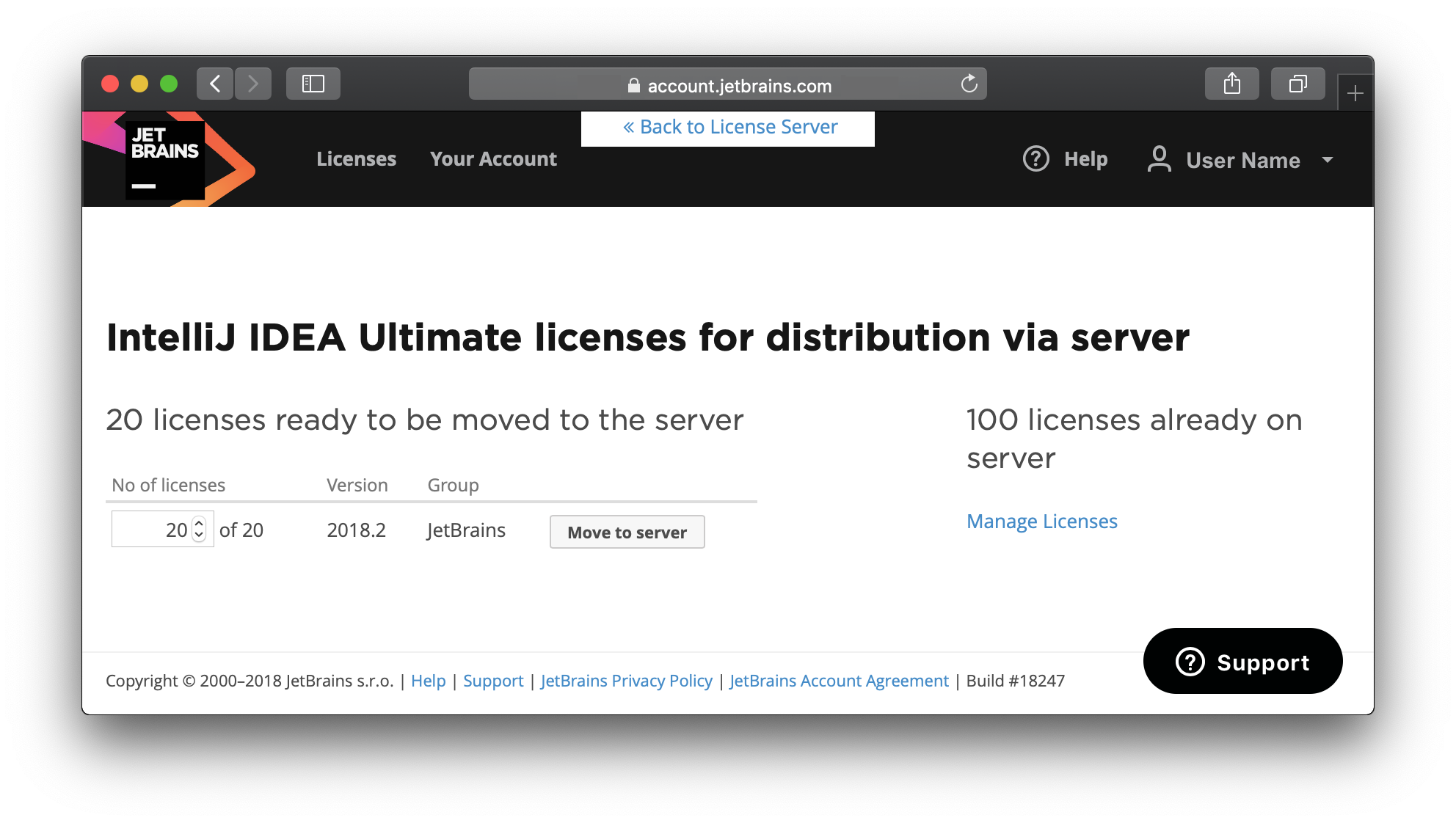100 licenses available through the License Server