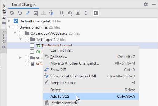 Adding a file to VCS