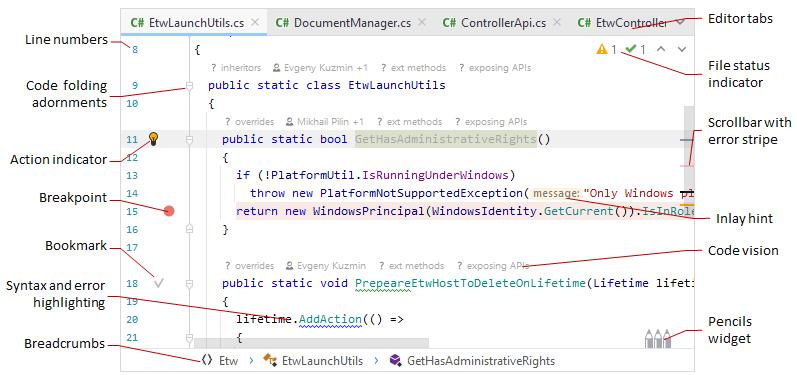 JetBrainsRider: visual elements of the editor