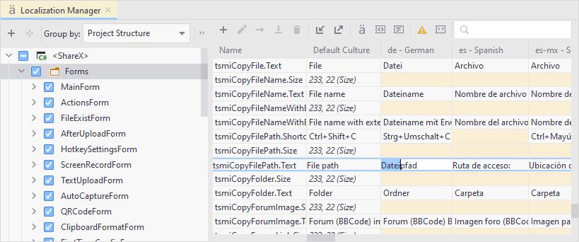 JetBrainsRider: Localization Manager