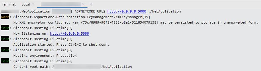 SSH remote debugging. Terminal