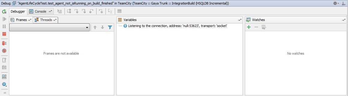 remote_debug_tool_window.png