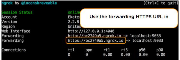 Custom widget ngrok https forwarding